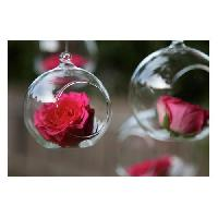 Glass Hanging Flower Bowl