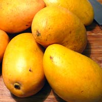 Bainganpalli Mangoes