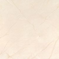Vitrified Tiles - Manufacturer, Exporters and Wholesale Suppliers,  Delhi - Stone and Tile
