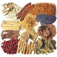 Raw Herbs - Manufacturer, Exporters and Wholesale Suppliers,  Gujarat - Vaghela Chemicals