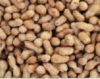 Groundnuts Shell