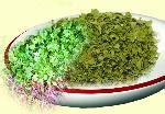 Coriander Leaves, Coriander Powder
