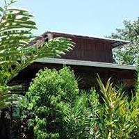 Farmhouse Organic Trees Construction Services