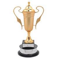 Metal Sports Trophy