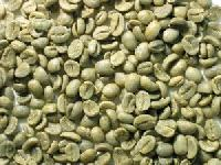 Green Coffee Beans for Extraction