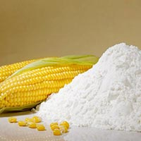Maize Starch Powder