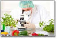 Food Analysis Service
