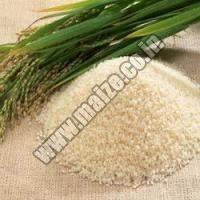 Rice Bran Meal