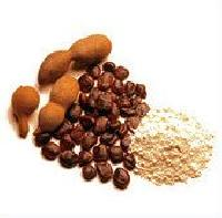 Deoiled Tamarind Kernel Powder