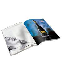 Brochures Printing Service