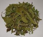 Stevia Dried Leaves & Stevia Power