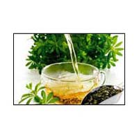 Coriander Leaf Oil