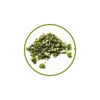 Cedar Herb