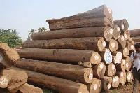 Teak round logs