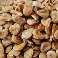 Datura Seed, Datura Stramonium