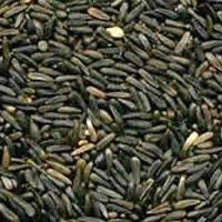 Niger Seeds - Manufacturer, Exporters and Wholesale Suppliers,  Odisha - Srikrishna Agencies