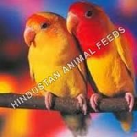 Love Bird Grower Feed