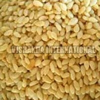 Toasted Hulled Sesame Seeds