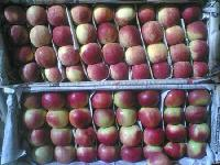 Kashmiri Apples