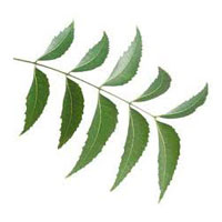 Neem Herbal Pesticide