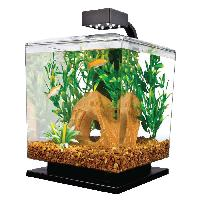 Fish Aquariums