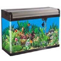Molded Glass Aquarium