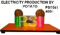 Electricity Production From Potatoes