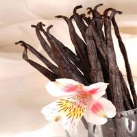 Organic Vanilla