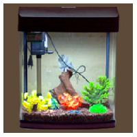 Front Glass Curved Aquarium