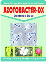 Azatobactor Dx - Manufacturer,  Maharashtra - Ashwamedh Herbal Research and Developmen