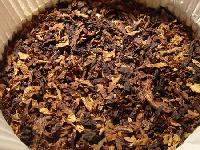 Chewing Tobacco Leaves