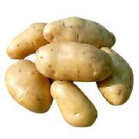 Dehydrate Potato Powder