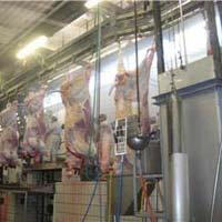 Slaughter Line Equipment