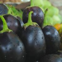 Brinjal Black Beauty Seeds