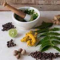 Ayurvedic Antioxidant Medicine