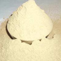Myrobalan Extract Powder