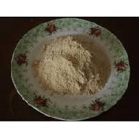 Oyster Mushroom Powder