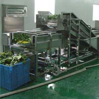 Ginger Processing Machines