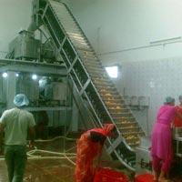 Mango Processing Machinery
