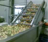 Papaya Processing machinery