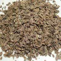 Indian Dill Seeds