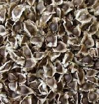 Organic Moringa Seeds (organic Moringa Oleifera Seeds)
