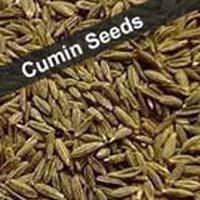 Cumin Seed