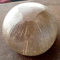 Polished Coconut Shell