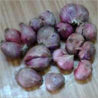 Hybrid Onion