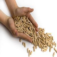 Agro Fuels