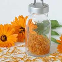 Marigold Fragrance Oil