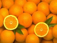 Fresh Kinnow Oranges