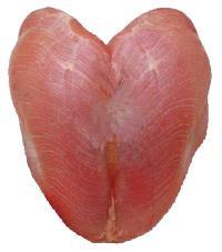 Turkey Double Breast Fillet