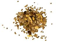 None Organic Seed